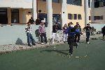 volley2011